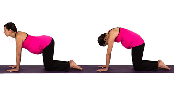 Four Prenatal Poses For Pregnant Yogis